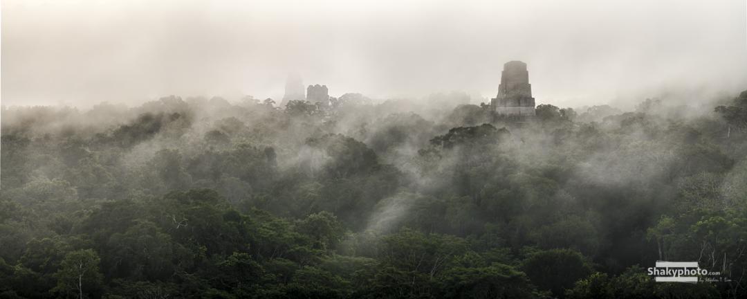 Tikal Discovered